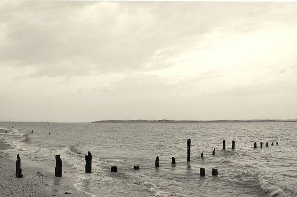 Old Groynes at Seasalter