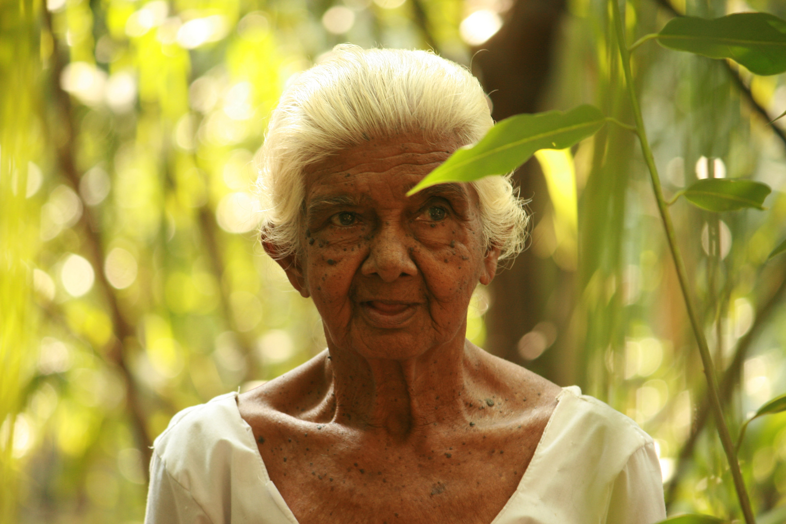 old lady - 83 years old