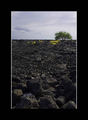 Old Lava