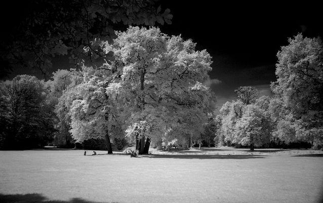 Oldenburg im Stadtpark