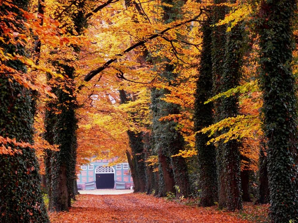 Oldenburger Herbsttag