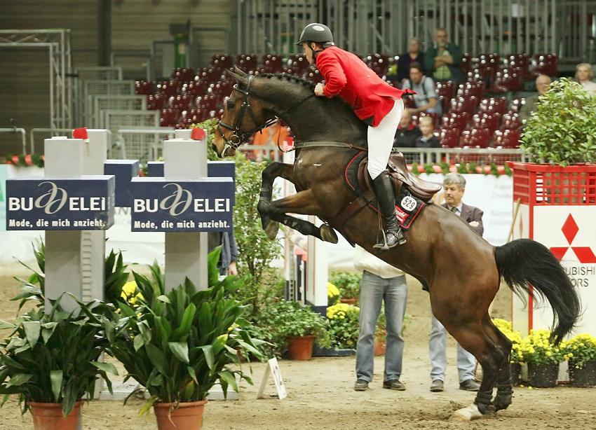 Oldenburger Pferdewoche #2