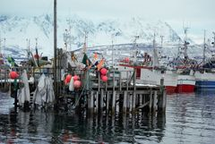 Oldenvik