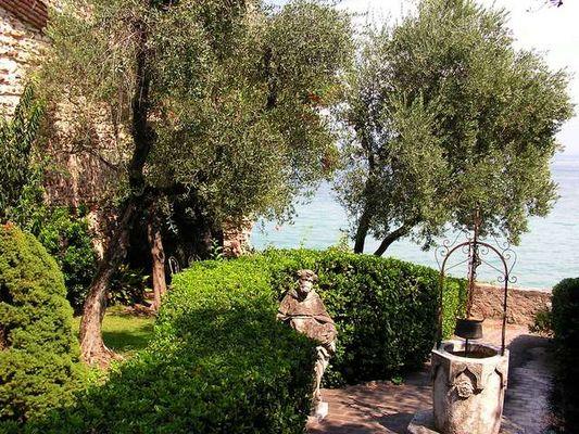 Oliven-Romantik