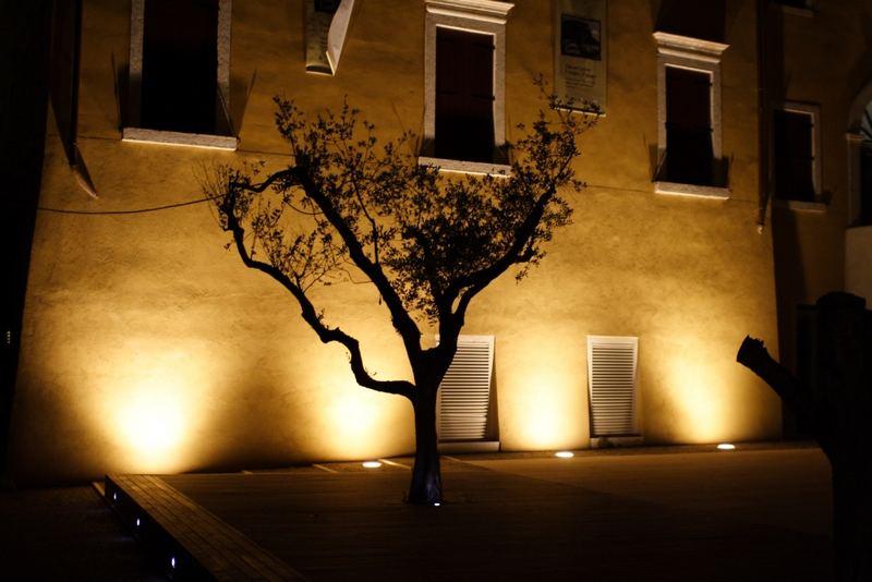 Olivenbaum -Die Skulptur-