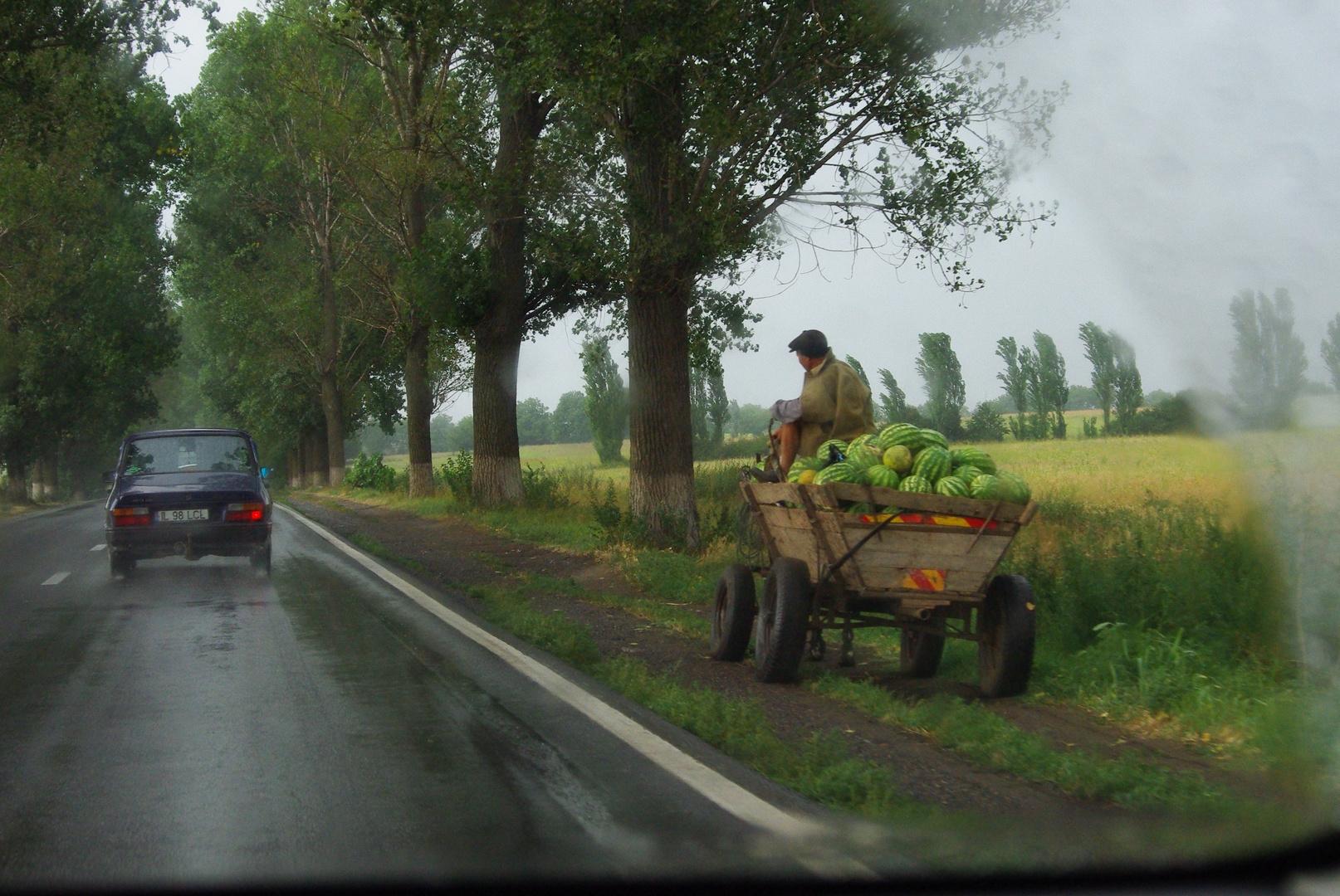 Olivier PAQUET   Contraste, Roumanie