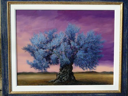 Olivo blu