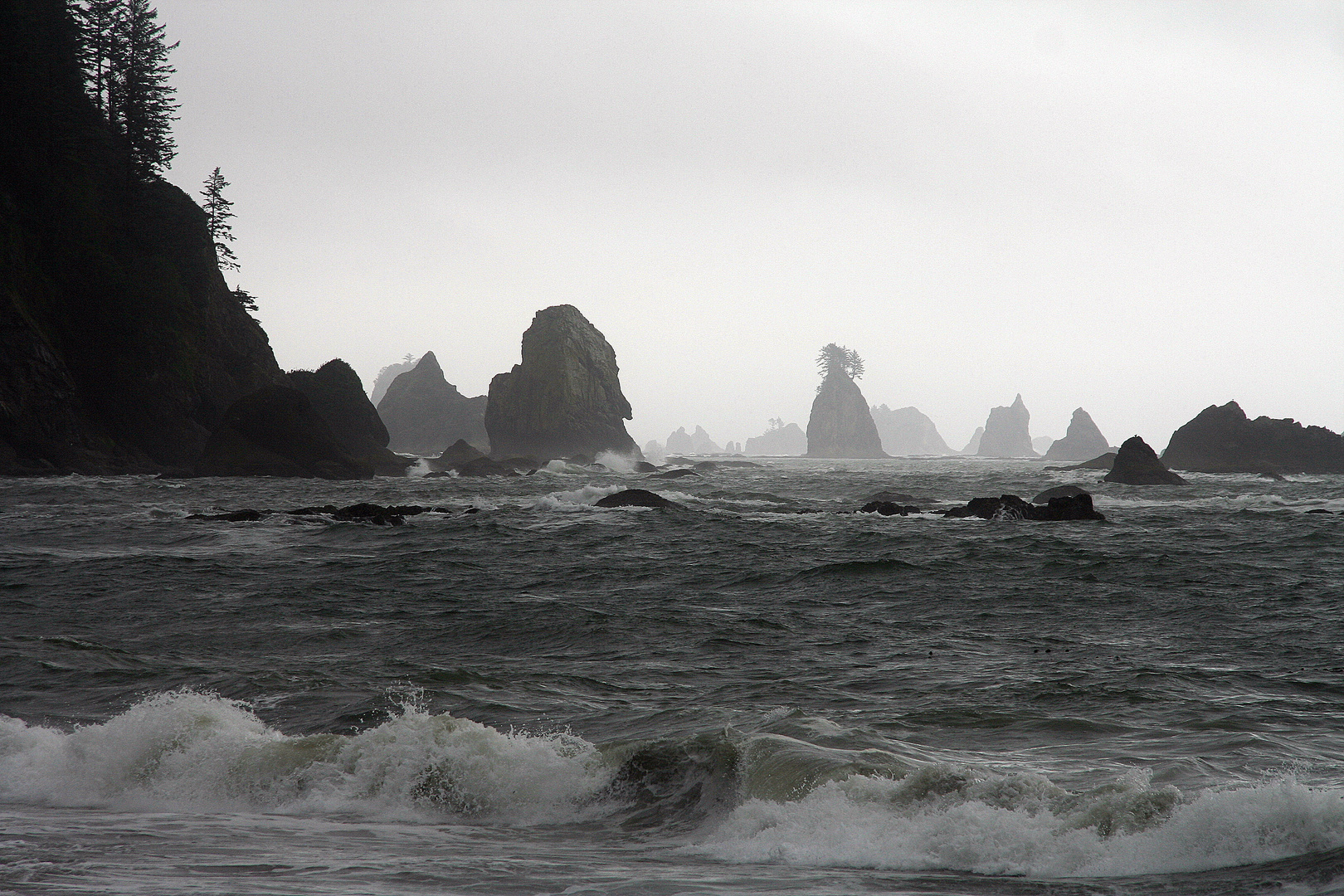 Olympic National Parc