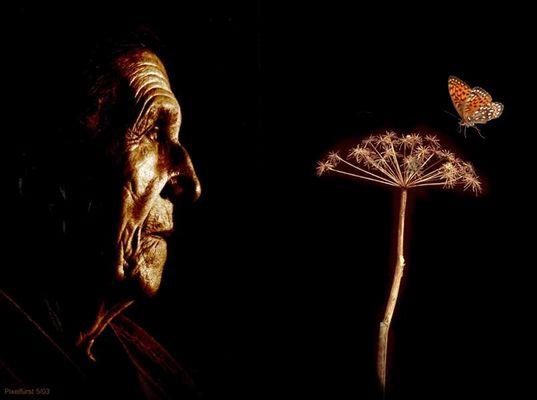 Oma Lise und der Schmetterling