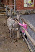 Oma sagt mich hat der Esel im Galopp verloren....