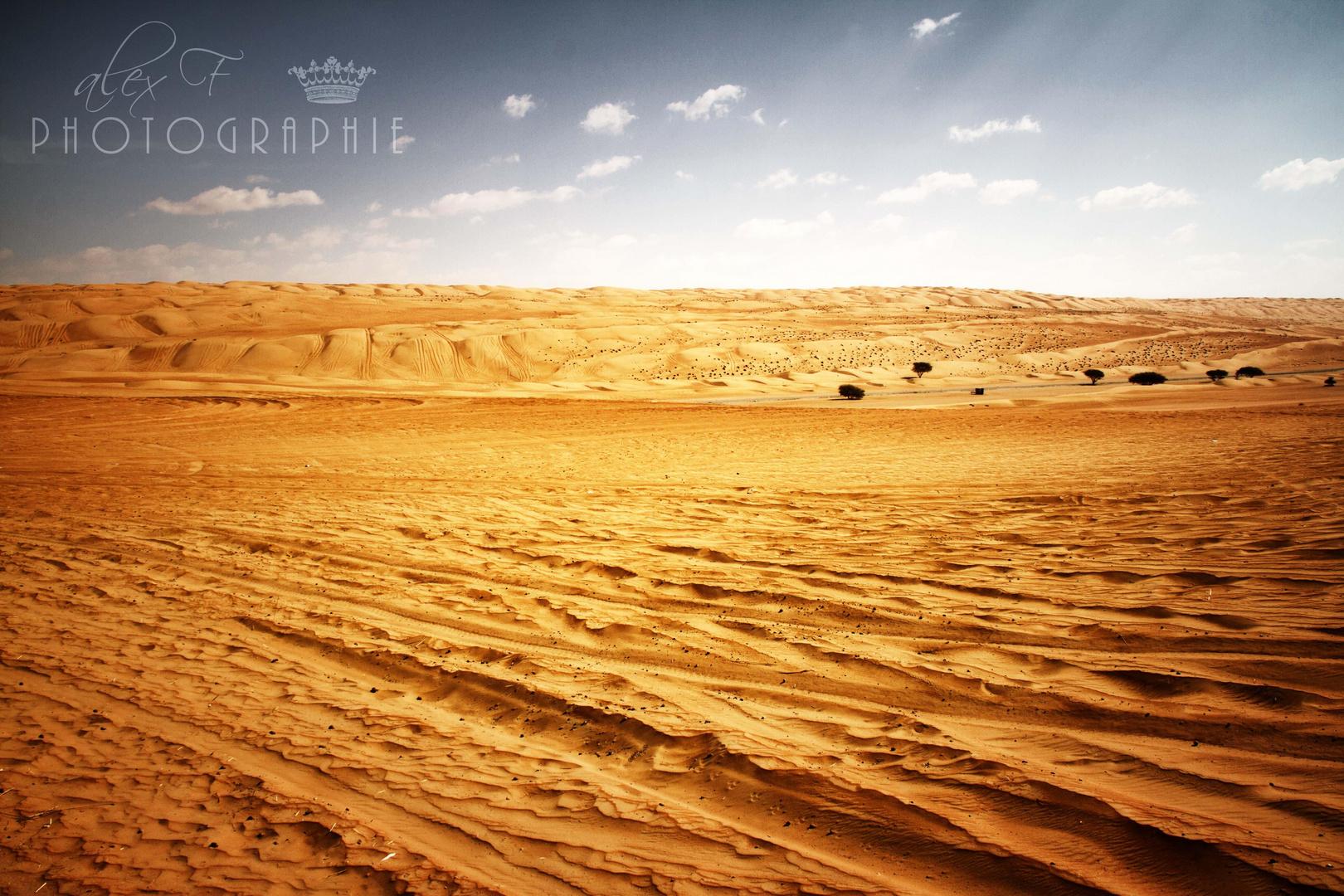 Oman #4, Wüstentour