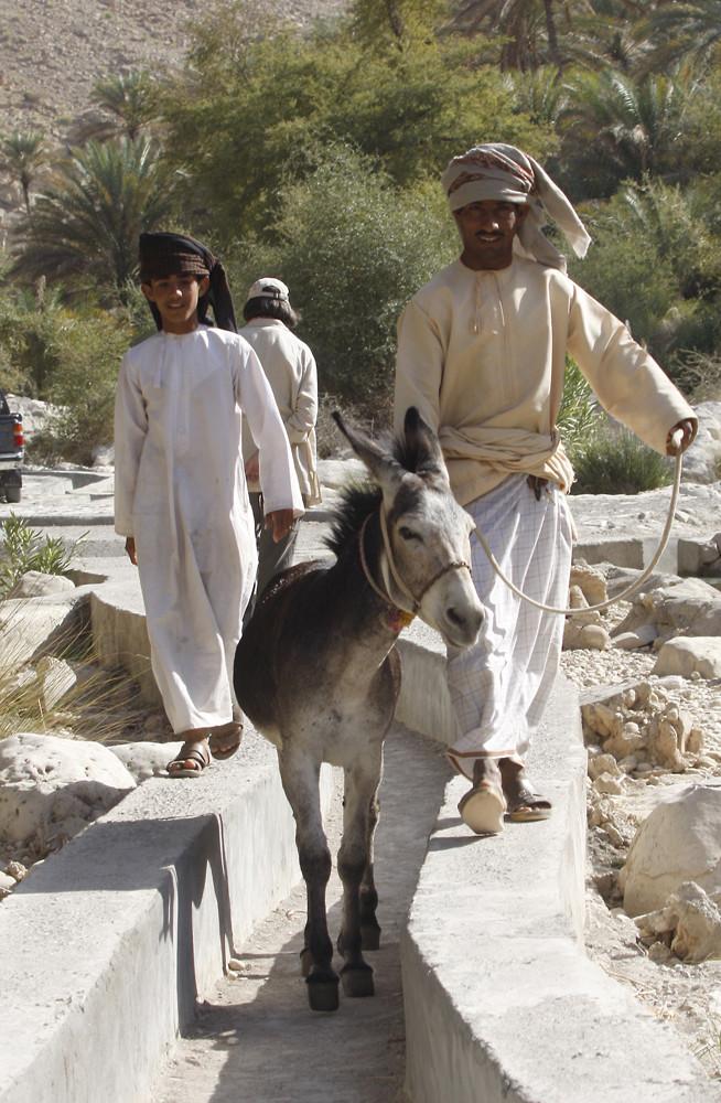 Oman-Wadi Bani Khalid_060