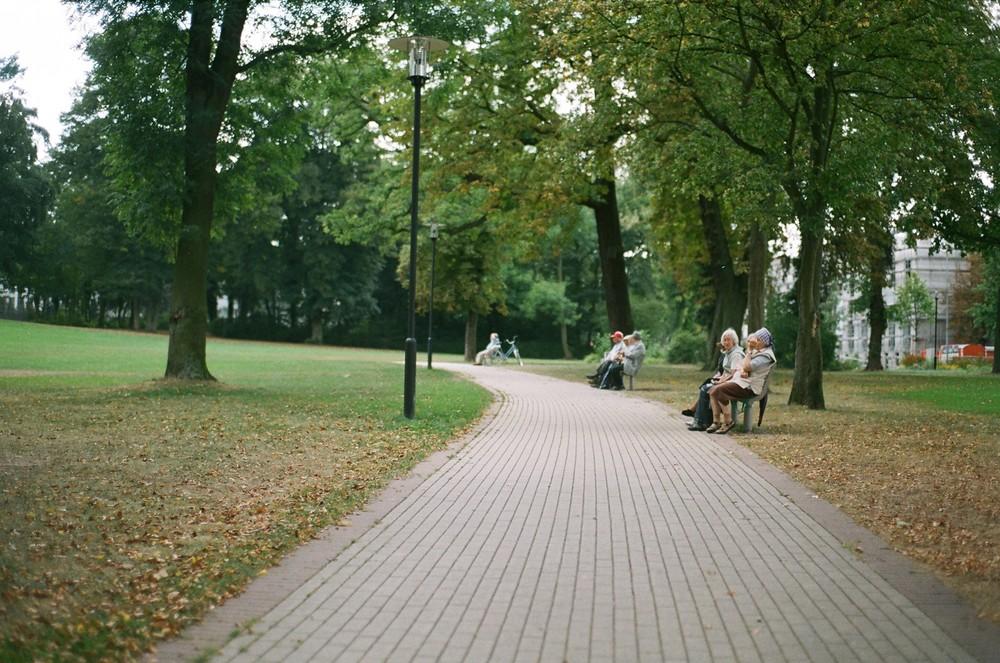 Oma´s Treffen sich im Park