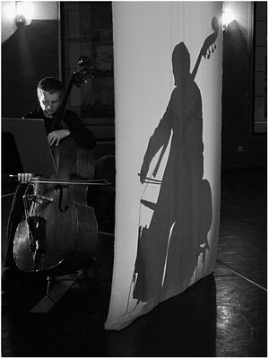ombre du musicien
