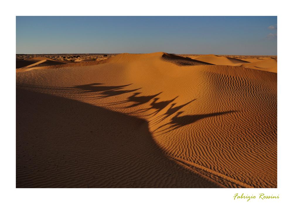 Ombre nel sahara