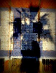 ombre vaudou