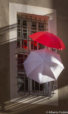 Ombrelli a Mondovi'