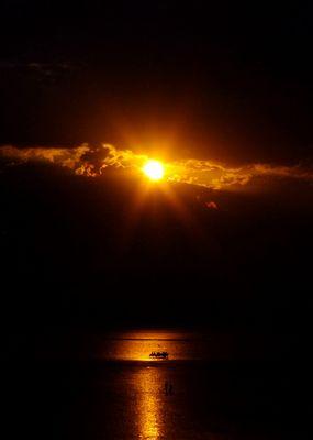 Ombres équestres sur coucher de soleil Manchois..