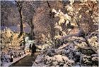 On a Snowy Evening in Central Park - No.5 - Walking in a Winter Wonderland