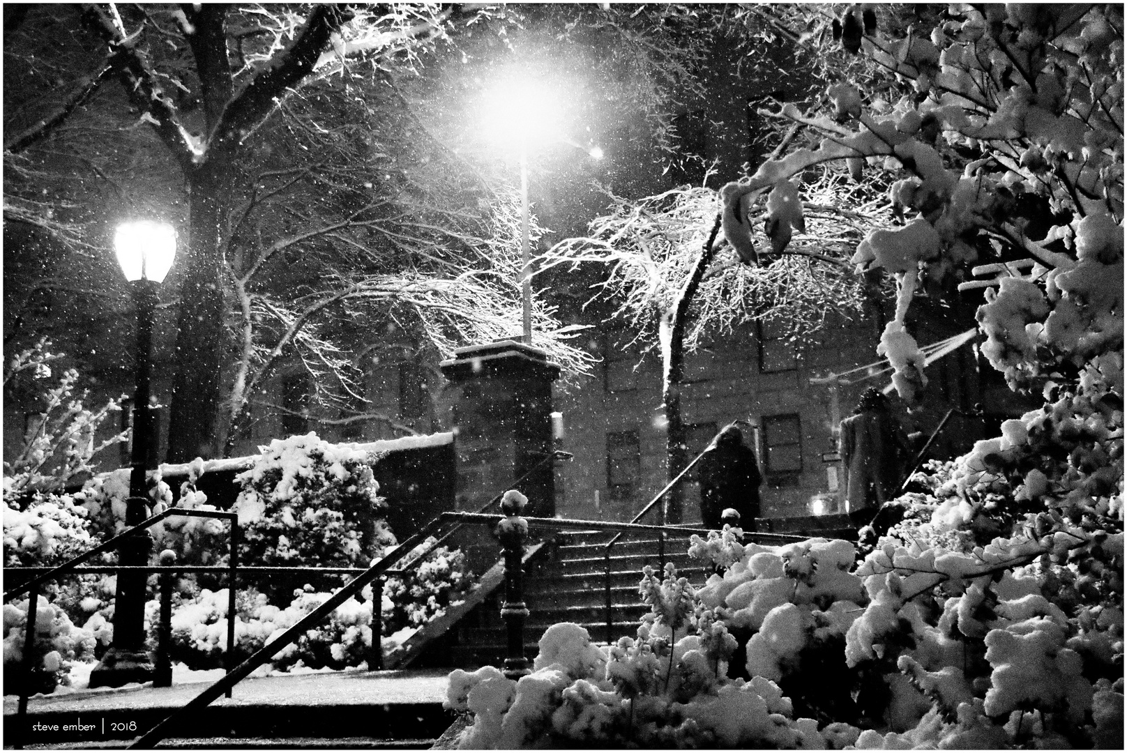On a Snowy Evening in Central Park - No.6 - Steps to 5th Ave