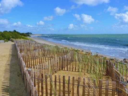 On essaie de protéger les dunes
