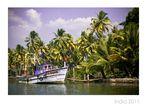 On Kerala Backwaters I
