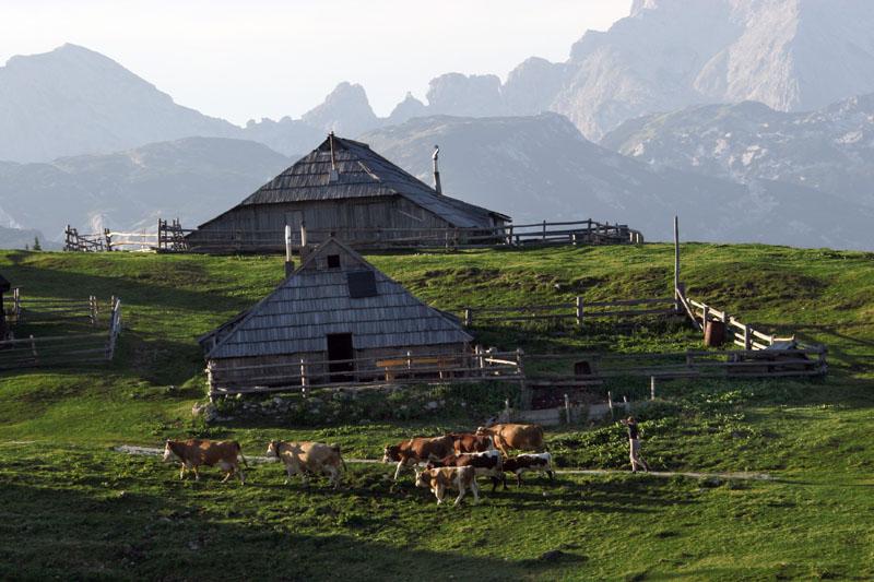 On mountain - Slovenia