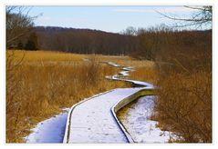 On the Appalachian Trail