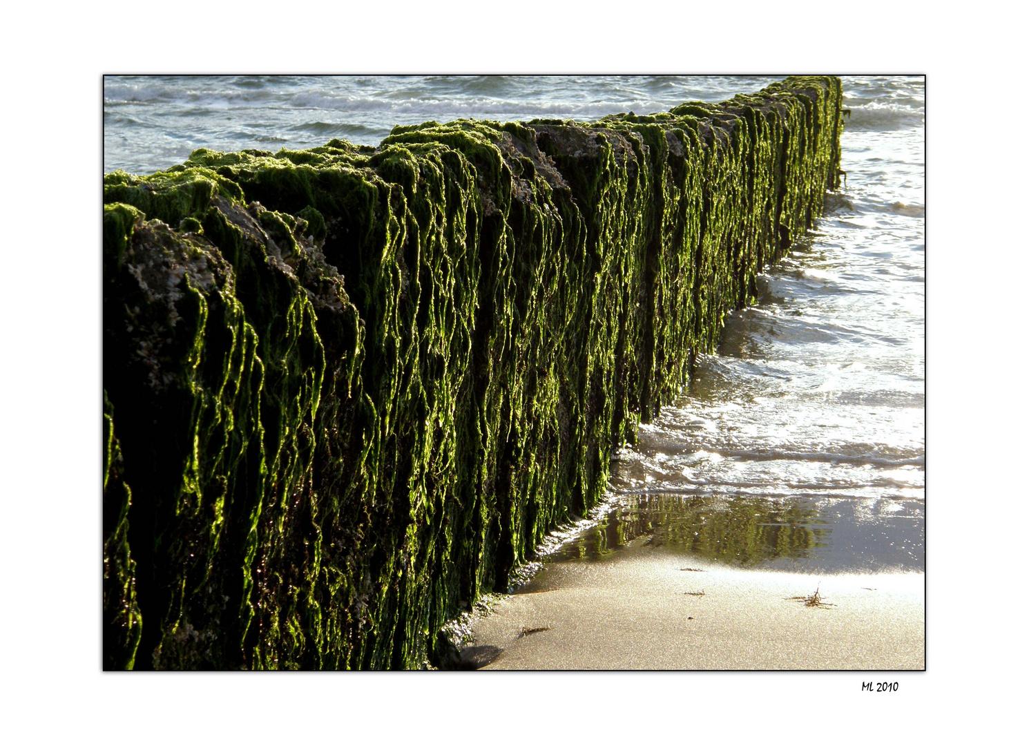 on the beach #1