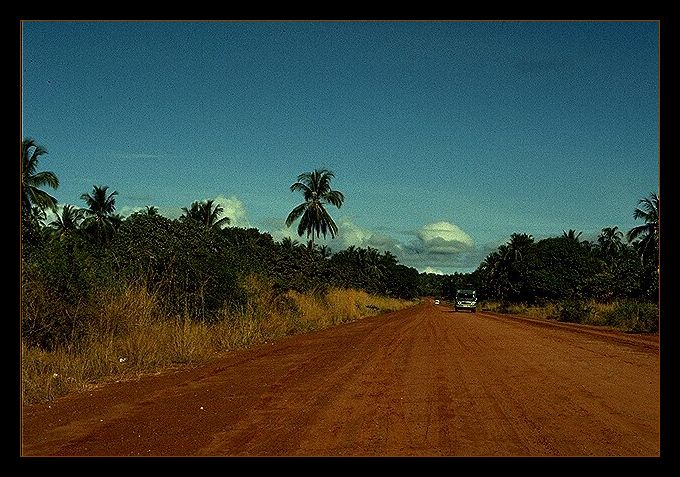on the road to Shimba Hills !