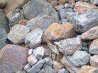On the rocks!
