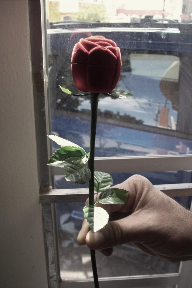 one flower