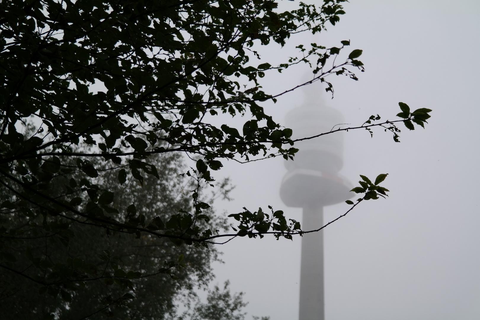 One Foggy Monday