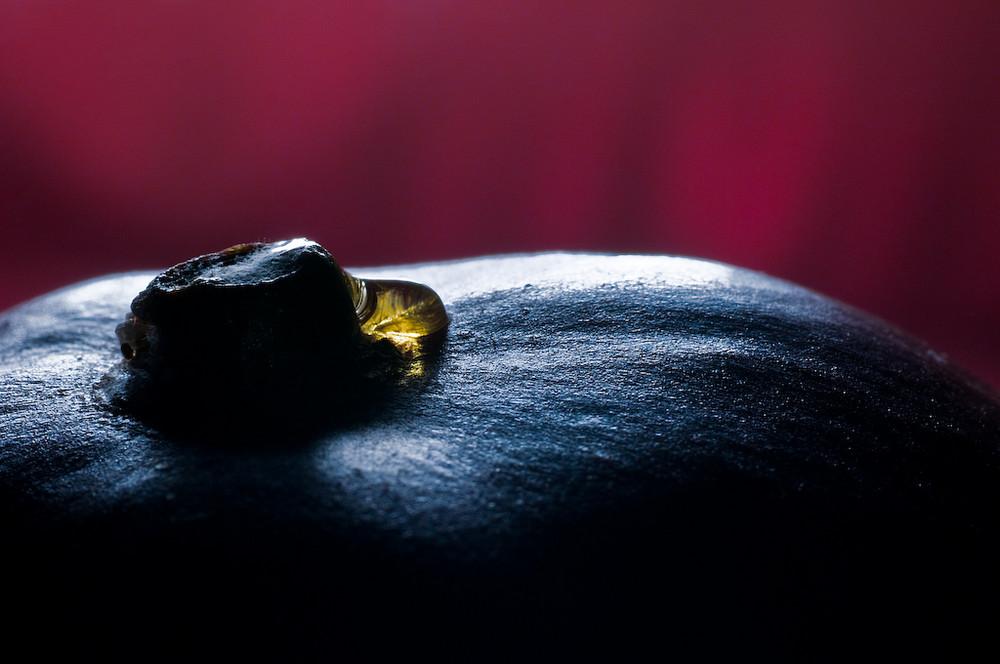 One Golden Drop