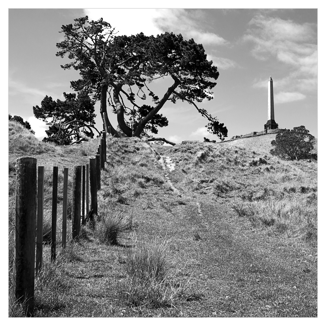 One Tree Hill - Auckland Neuseeland