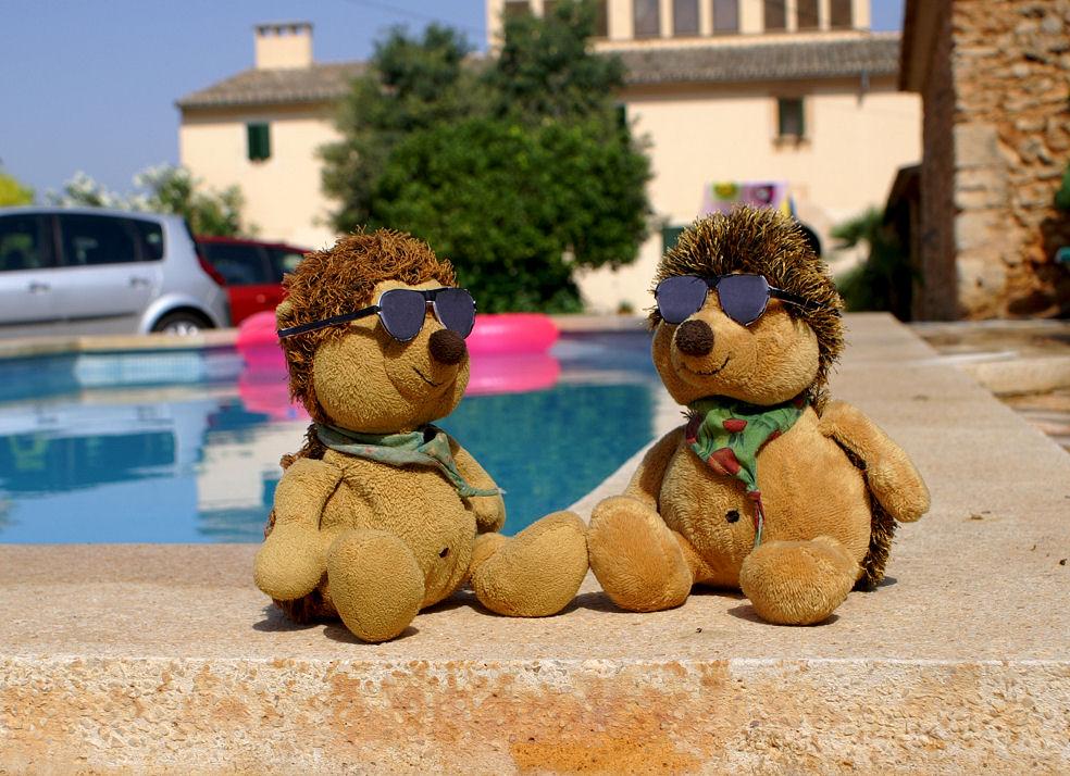 Onkel Theo und ich am Pool 2