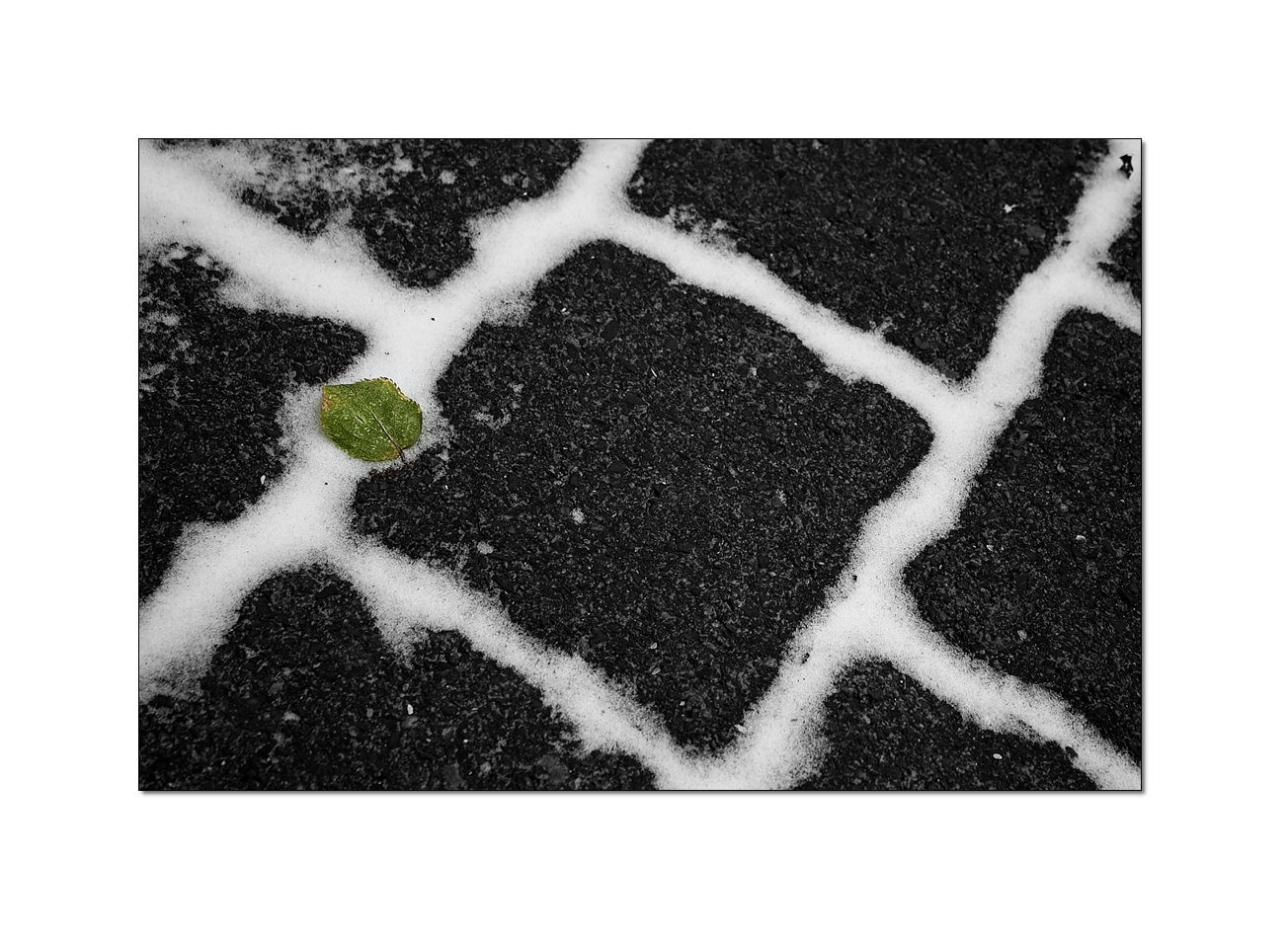only a leaf.....
