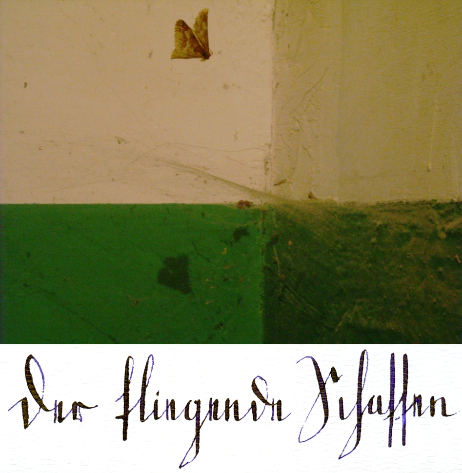 Op. 178-226 Der fliegende Schatten