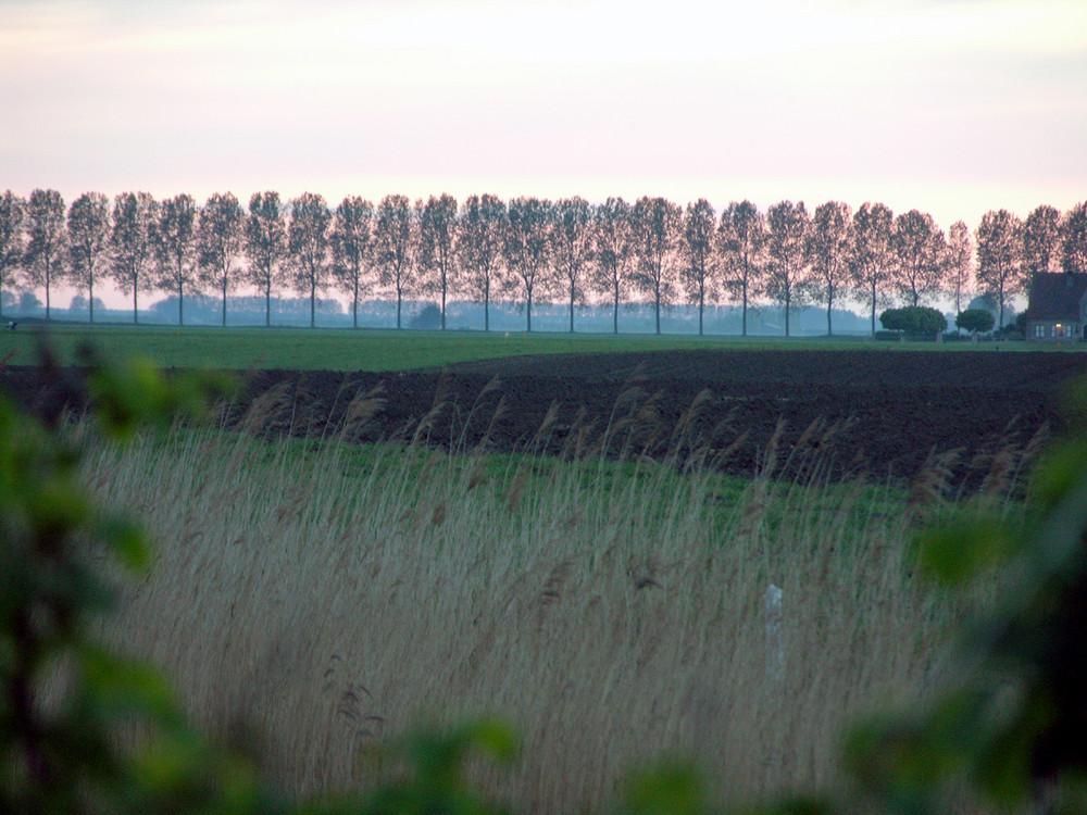Op tocht in Zeeuws-Vlaanderen