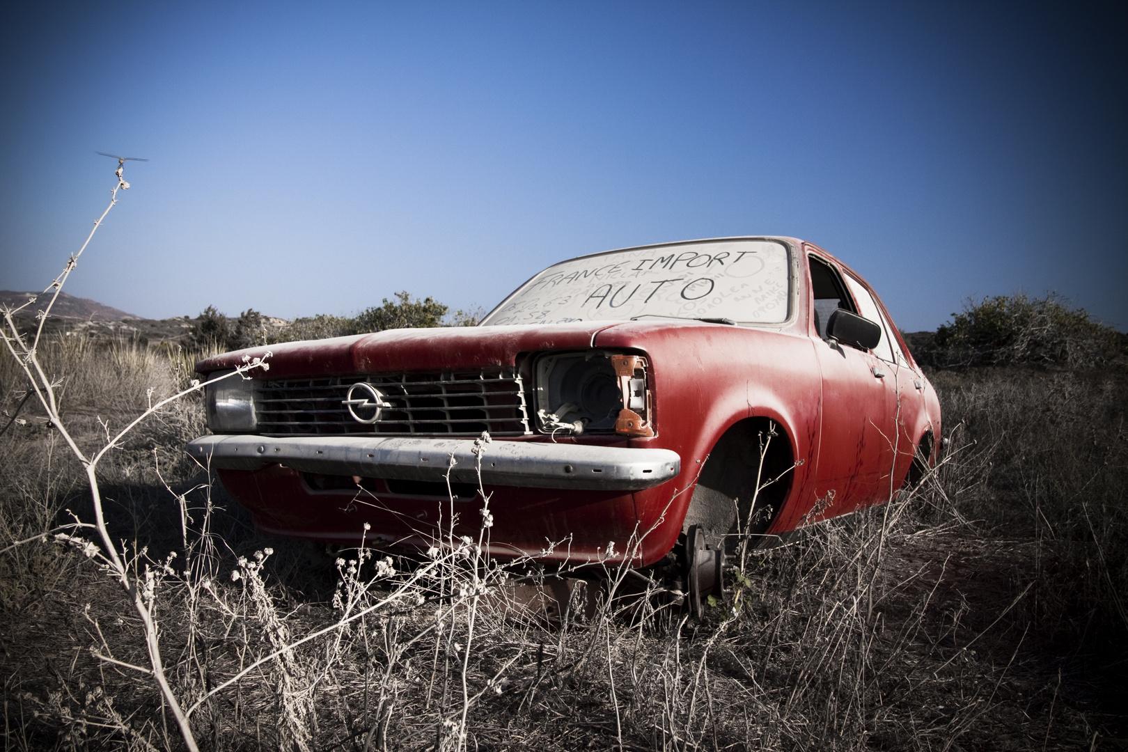 Opel im Feld
