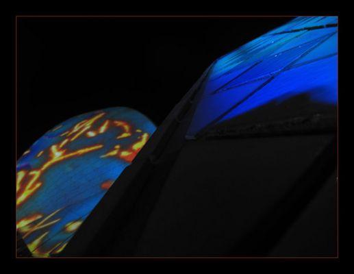 Opera House - Luminous