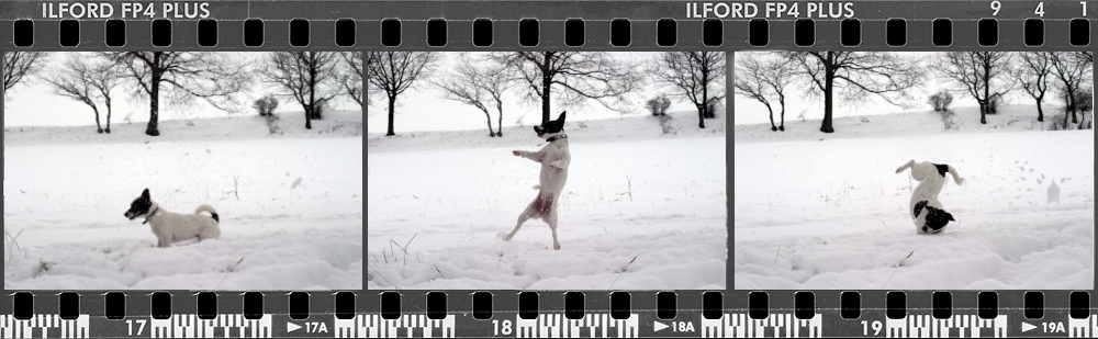 -=Operation=- *Snowball*