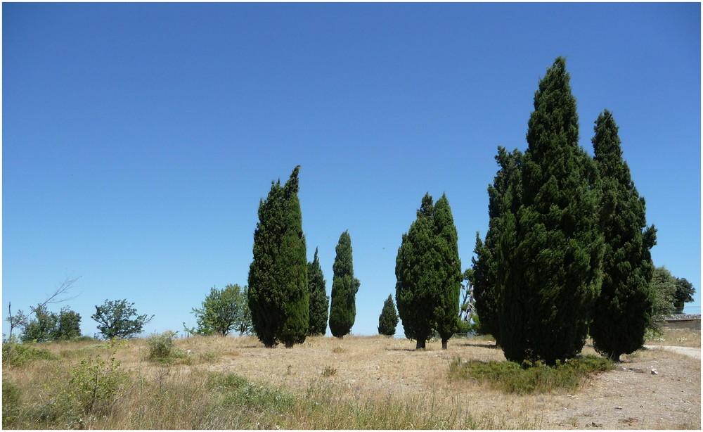 oppidum d'enserune