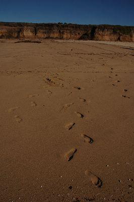 Optische Täuschung - meine Spuren im Sand