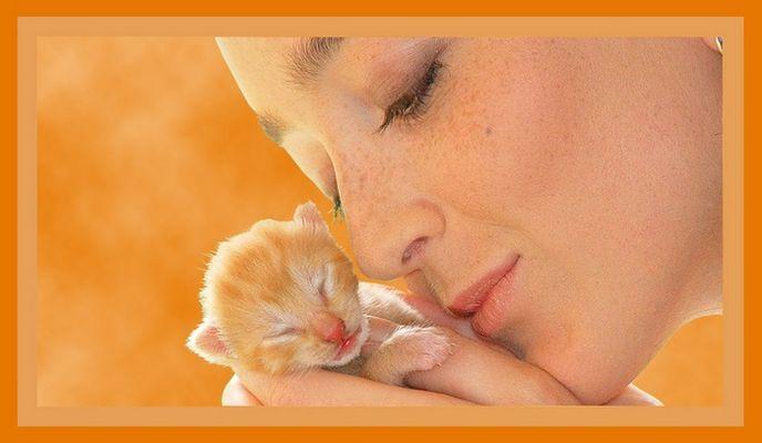 Orange, die Liebe ist gross!