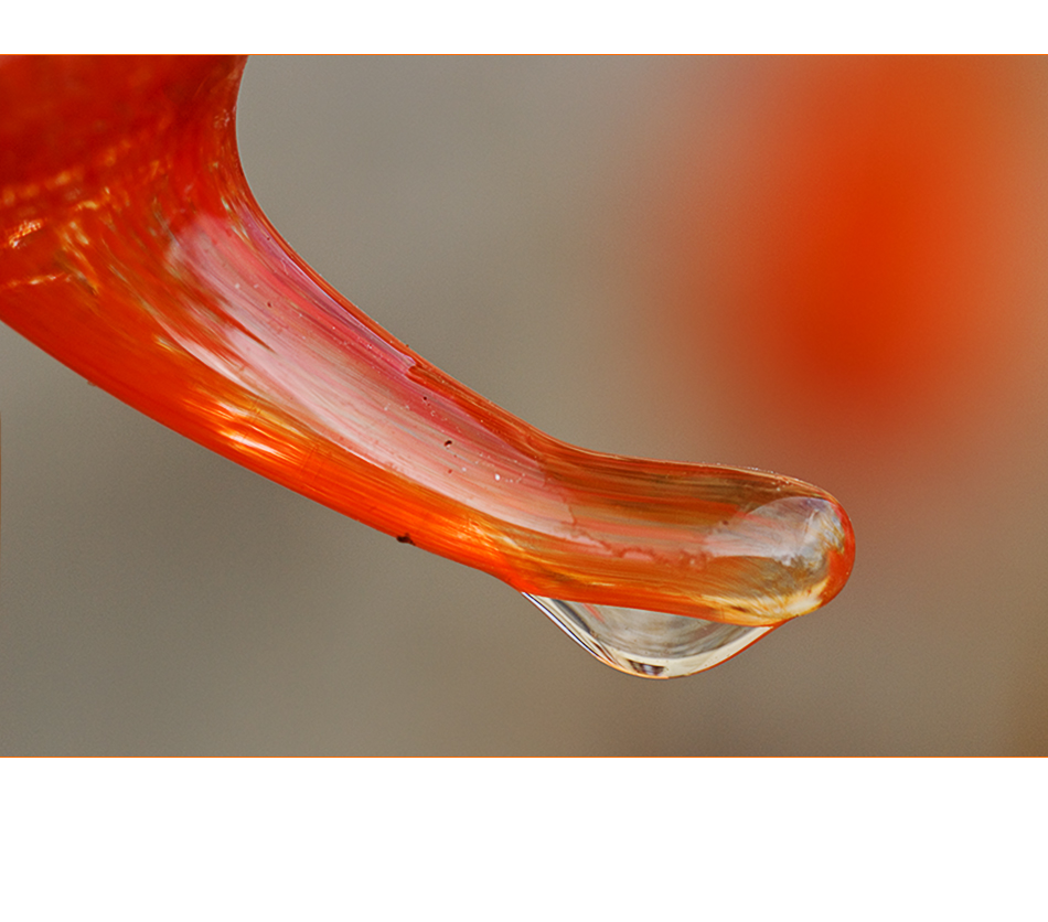 orange Korrespondenz