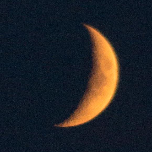 Orange Mondsichel