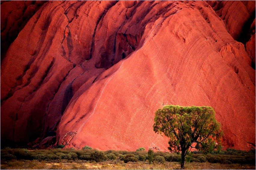 orange Uluru3