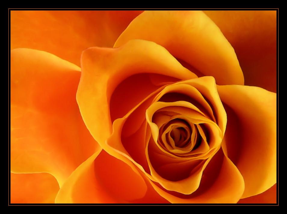 orange Zeiten brechen an