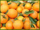 Orangen auf dem Markt in Mallorca